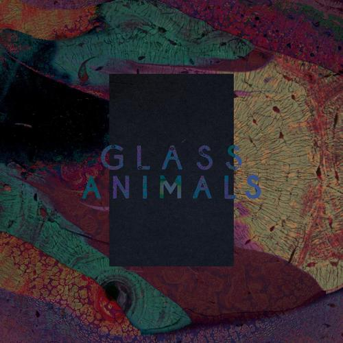 Glass Animals – Exxus