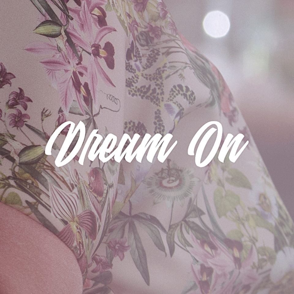 THE ROOP – Dream On