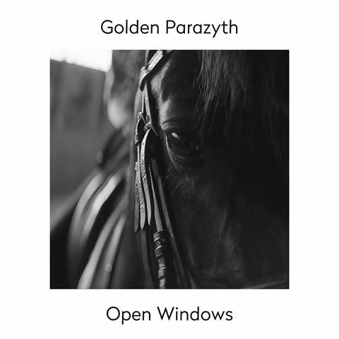 Golden Parazyth - Open Windows