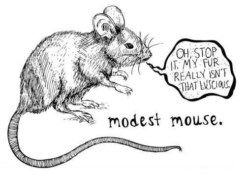 Klausyti Negalima Užmiršti: Modest Mouse – The Lonesome Crowded West