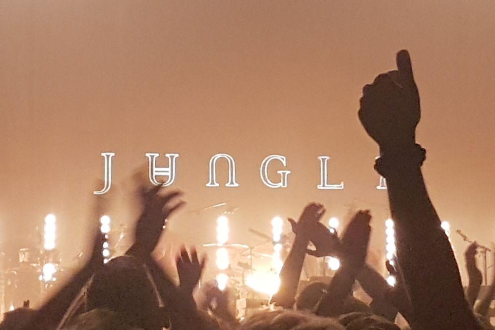 """Grupės """"Jungle"""" koncerto apžvalga: o jei noriu dar?"""