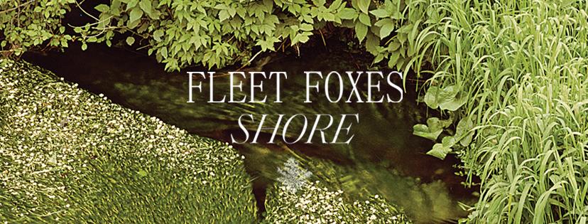 "Naują albumą išleido ""Fleet Foxes"""