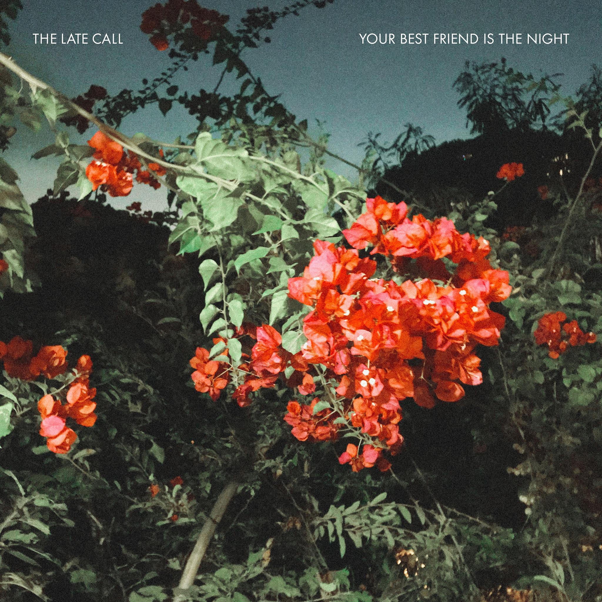 """Švelnus muzikinis trapumas – naujame """"The Late Call"""" albume"""